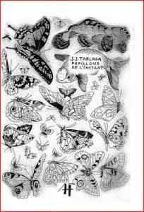 couverture de Papillons de l'instant